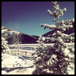 winter activities in crested butte || Crested Butte Real Estate Homes, Condos and Lands for Sale
